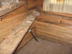 muhu saun (3)